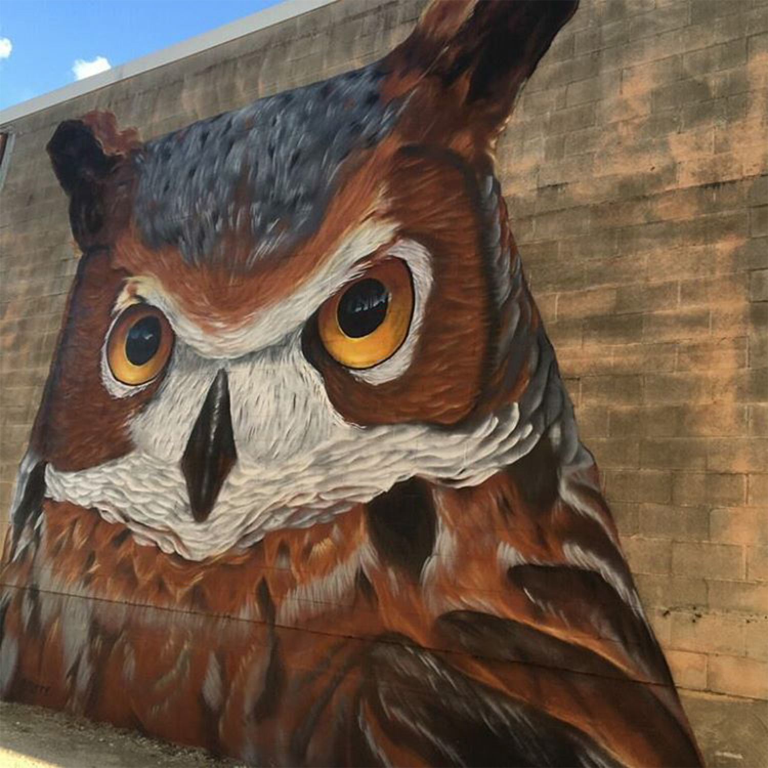 Owl Mural in Houston by Pilot FX