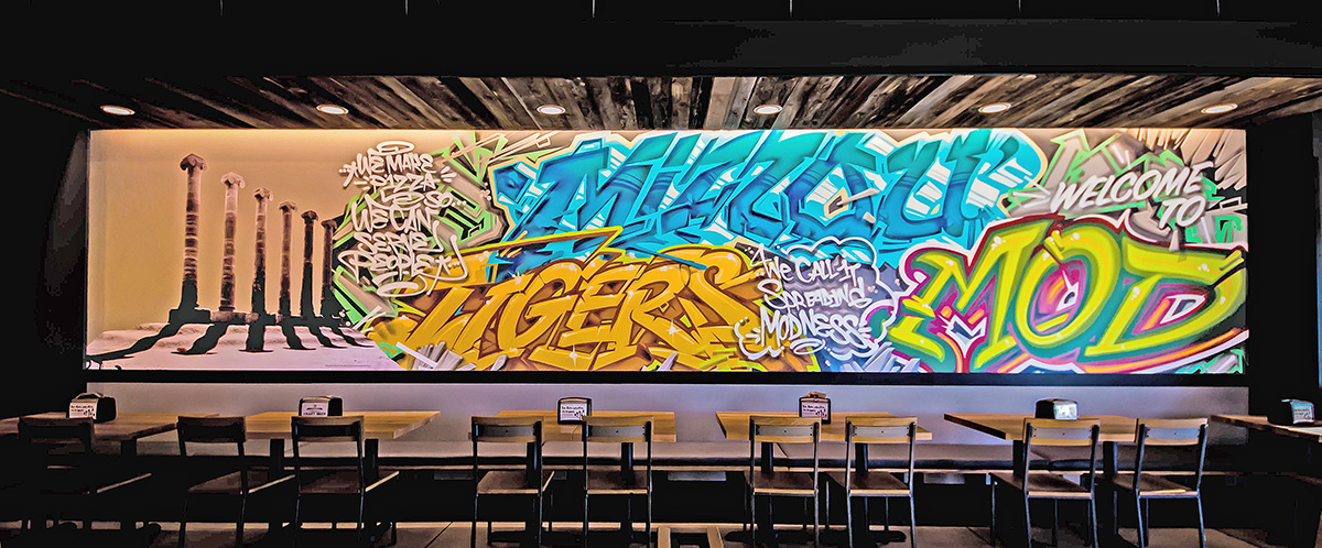 St. Louis Mural Artist