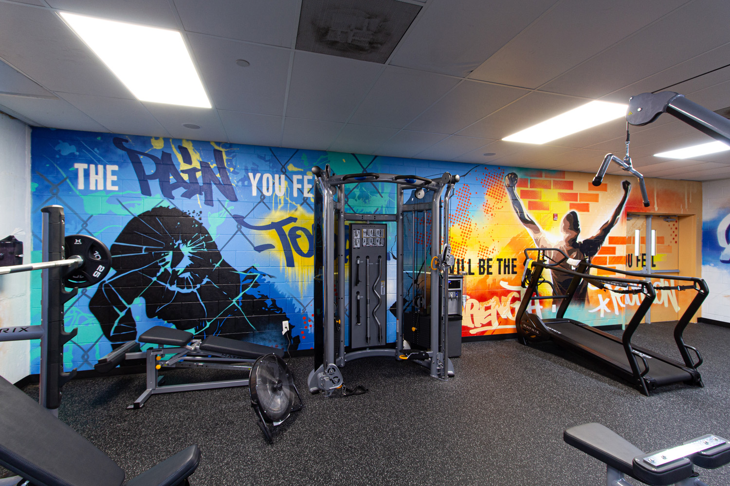 NJ Mural Painter Basement Gym