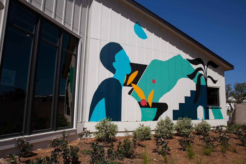 Mural Artist San Diego