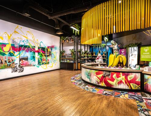 Maine Graffiti Artist – Grass Monkey Dispensary Interior Mural in Portland